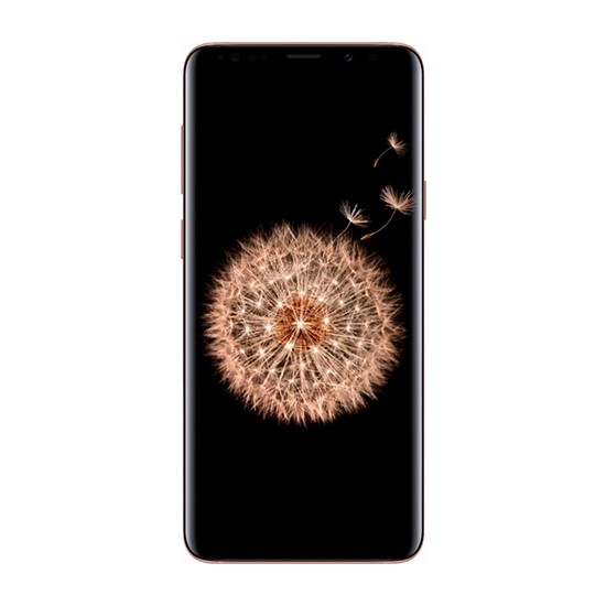 Изображение Samsung Galaxy S9+ 6GB RAM 64GB LTE G965FD Gold